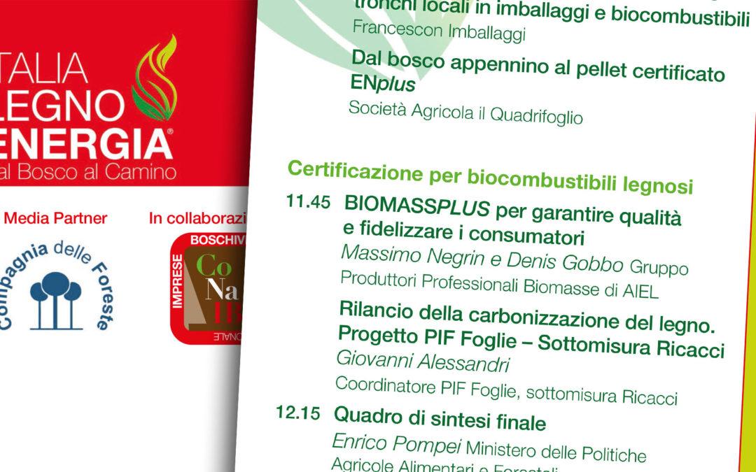 Italia Legno Energia. Ricacci al convegno del 25 marzo 2017