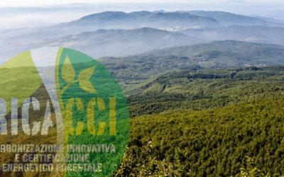 Progetto RICACCI – Relazione generale finale