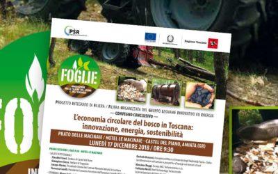 Innovazione, energia e sostenibilità dell'economia circolare del bosco in Toscana